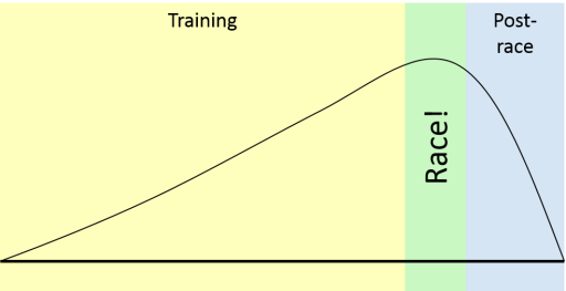 trainingcurve.png